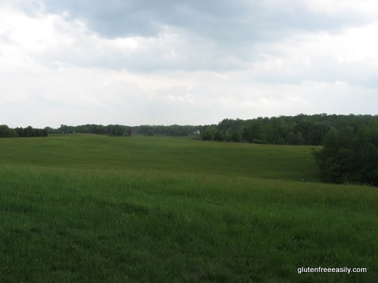 litchfield-view-2-may-2009