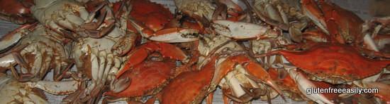 Crabs 041
