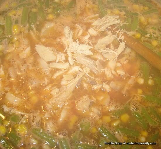 Tortilla Soup 040