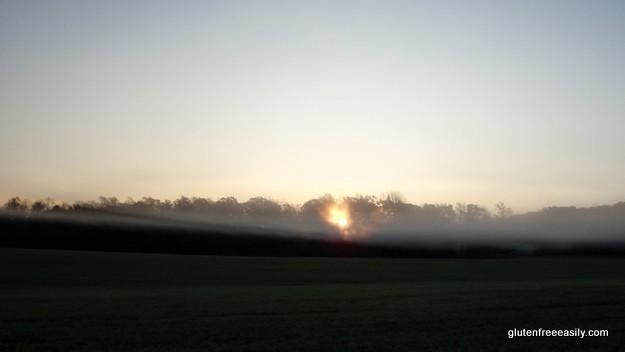 Micamine Morning2