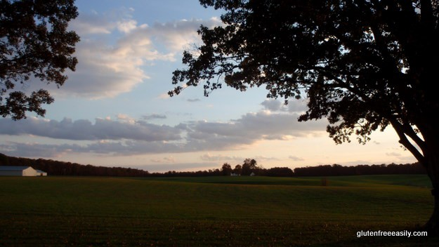 Micamine Sunset1