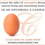 Naturally Knocked Up Fertility e-Course Scholarship