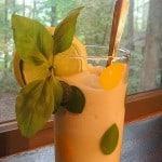 Lemon-Lime Coconut Basil Ice