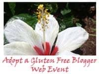 adoption, blogging event, adopt a gluten-free blogger, brittany angell, real sustenance