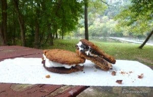 Gluten-Free Cookie S'mores! Use your favorite gluten-free cookie instead of graham crackers to make these divine treats. So much better than regular S'mores! (from GlutenFreeEasily.com) (photo)
