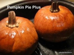 Badge for Pumpkin Series, gluten free, dairy free, pumpkin, recipes