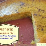 Best Pumpkin Pie Ever and it's Crustless, Dairy Free, Gluten Free, and LOVED by everyone! [from GlutenFreeEasily.com] (photo)