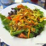 Pulled Chicken Salad with Lime-Cilantro Dressing