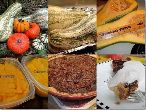 gluten free, dairy free, pumpkin pecan pie, cushaw squash, press-in pie crust