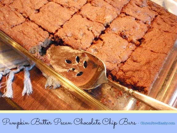 Pumpkin Butter Pecan Chocolate Chip Bars. Honestly, the name alone makes my mouth water! I love ALL those ingredients! These bars have been rated as my best recipe ever by one family member. Give them a try and see what you think. They're gluten free, grain free, dairy free, and paleo and oh so good! [from GlutenFreeEasilly.com] (photo)