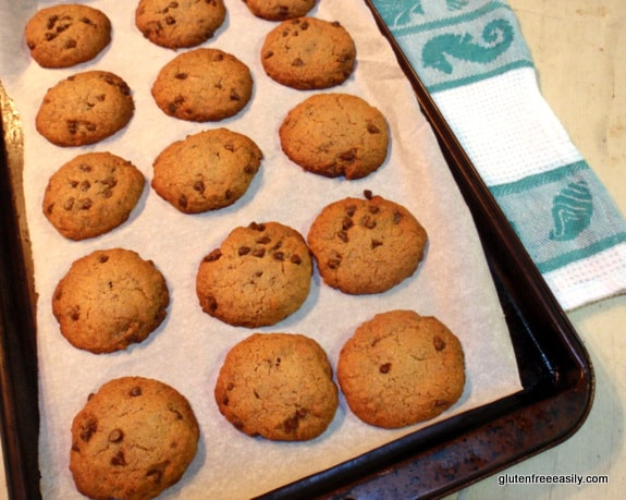 "Toasted Coconut Chocolate Chip ""Samoa""-Taste Cookies - Gluten-Free, Grain-Free, Dairy-Free, Egg-Free, Vegan at Gluten Free Easily"
