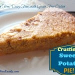 Crustless Gluten-Free Sweet Potato Pie from Gluten Free Easily. Nobody will miss the crust with this pie; I promise! Naturally gluten free and dairy free with grain-free, egg-free option. Oh my, my, my, this pie is good! Warning: It might replace your pumpkin pie. [from GlutenFreeEasily.com]