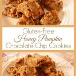 These Gluten-Free Honey Pumpkin Chocolate Chip Cookies are a wonderful way to use canned or fresh pumpkin. I even share a grain-free version. [from GlutenFreeEasily.com]