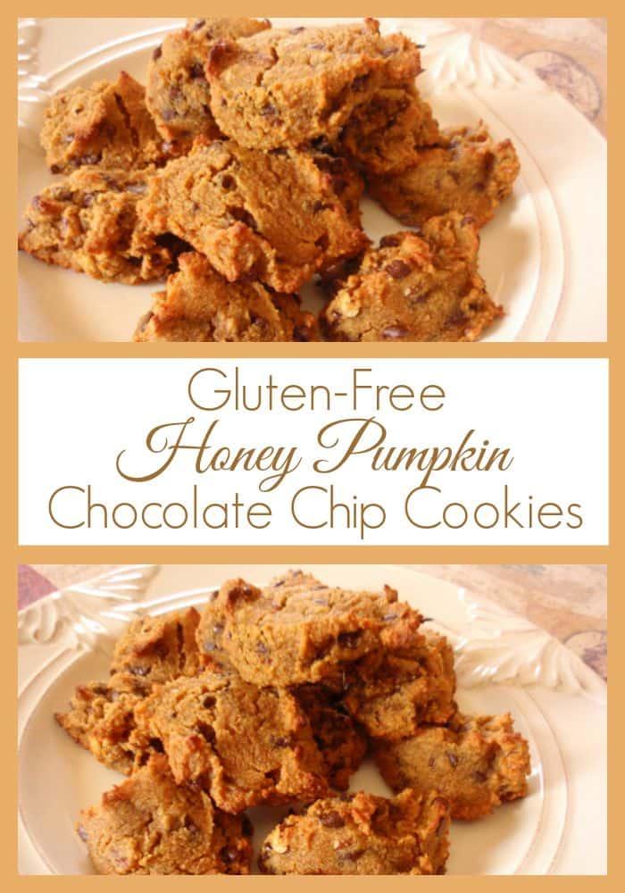 Gluten-Free, Grain-Free Honey Pumpkin Chocolate Chip Cookies at Gluten ...