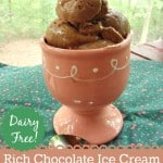 Rich Chocolate Ice Cream. Made from just four ingredients, including those ripe bananas you always have on the counter. Dairy free, rich, creamy & delicious. [from GlutenFreeEasily.com]
