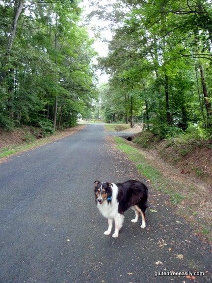 walking, movement, self-care retreat