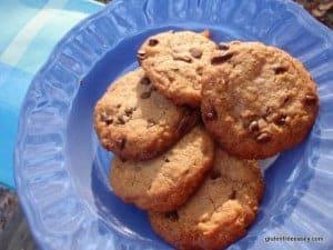 gluten free, dairy free, gluten-free Girl Scout cookies, Samoas, Girl Scout cookie knockoffs, gluten-free Girl Scout cookies, whole food friday, wellness weekend, Gluten-Free Wednesdays
