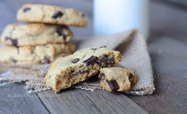 gluten free, grain free, dairy free, refined sugar free, paleo, primal, chocolate chip cookies, Danielle, Against All Grain