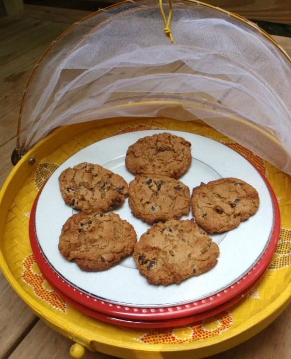Gluten-Free Cashew Butter Oatmeal Chocolate Chip Cookies from gfe