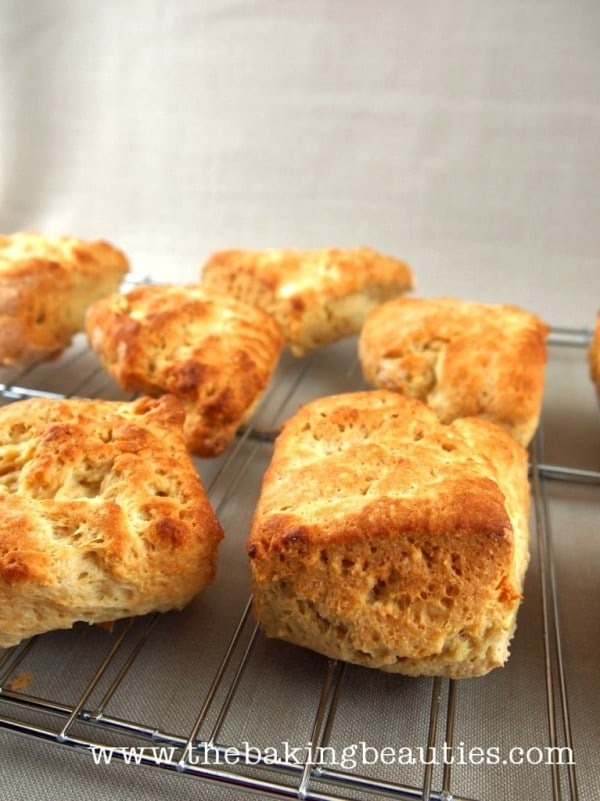 Big Fluffy Gluten-Free Buttermilk Biscuits from The Baking Beauties [featured on GlutenFreeEasily.com]