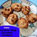 Chocolate Chip Coconut Cookies (Paleo-Friendly)