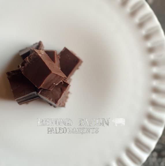 Triple Chocolate Freezer Fudge from Beyond Bacon by Paleo Parents