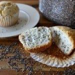 Gluten-Free Lemon Chia Seed Muffins