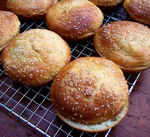 Hamburger Buns Free Range Cookies