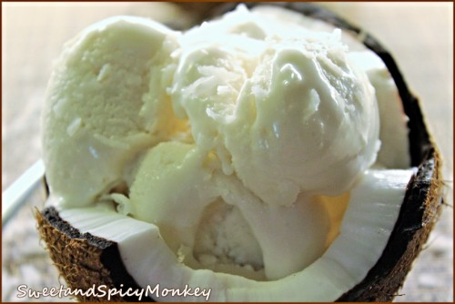 Homemade Coconut Ice Cream Sweet and Spicy Monkey
