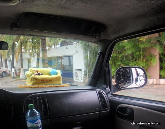 Sponge Bob Rode in The Taxi with Us to the Square Cozumel