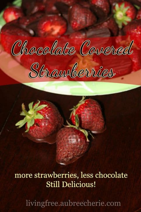 Chocolate Covered Strawberries Living Free