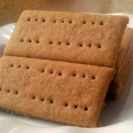 Gluten-Free Graham Crackers Fairy Wings and Pixie Dust