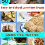 When you need some school lunch inspiration, check out these 50 Gluten-Free Nut-Free Back-to-School Lunchbox Treats! [featured on GlutenFreeEasily.com] (photo)