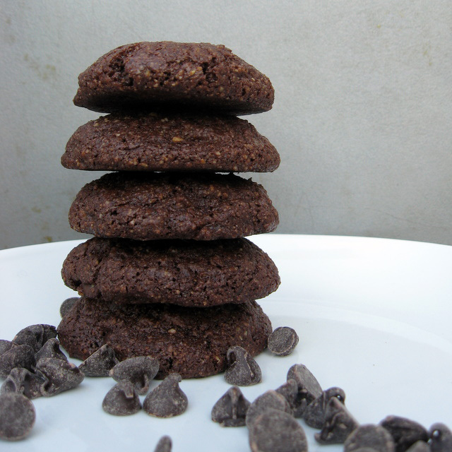 Gluten-Free Nut-Free Chocolate Pumpkin Seed Flour Cookies The Mommy Bowl