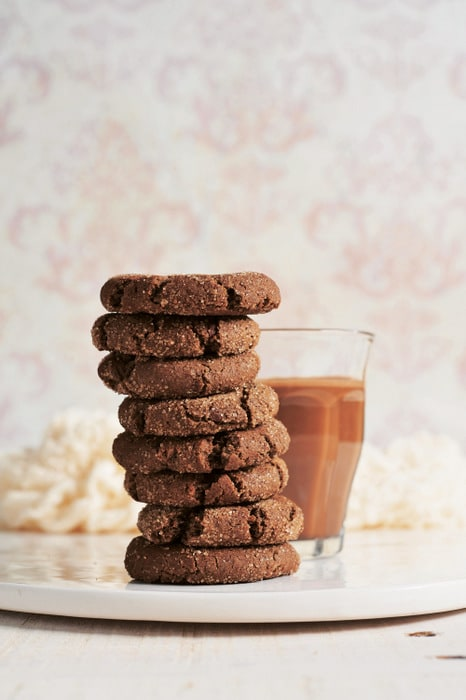 Hot Cocoa Snickerdoodles Cara Reed