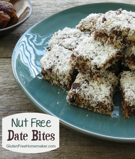 Nut_Free_Date_Bites_The Gluten-Free Homemaker