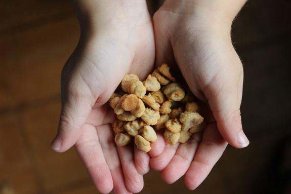 Gluten-Free Grain-Free Nut-Free Paleo O's Cereal from Predominantly Paleo