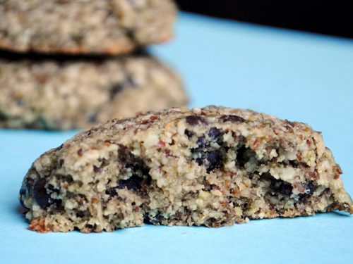 Gluten-Free Nut-Free Pumpkin Seed Chocolate Chip Cookies She Let Them Eat Cake