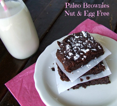 Gluten-Free Paleo Egg-Free Nut-Free Brownies Cassidy's Craveable Creations