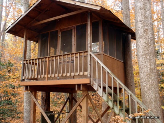 Treehouse Built By Dad Gluten Free Easily