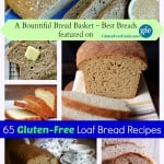 "Wow! 65 More of the Best Gluten-Free Loaf Bread Recipes, whether you're ""just gluten free,"" gluten free and dairy free, paleo, vegan, etc. (photo)"