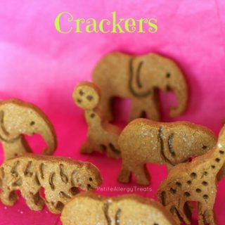 What's better than homemade animal crackers? Animal Graham Crackers! Gluten free and vegan from Petite Allergy Treats.