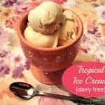 Tropical Ice Cream (Dairy Free)