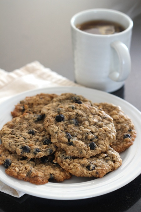 Gluten-Free Blueberry Oatmeal Cookies