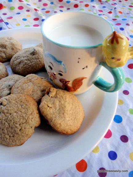 Gluten-Free Oatmeal Raisin Chocolate Chip Cookies