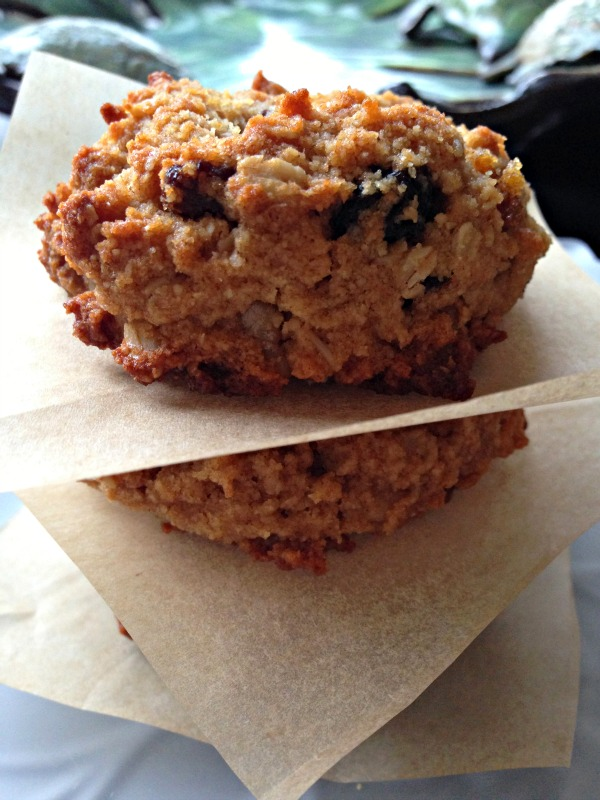Gluten-Free Soft Chewy Oatmeal Raisin Cookies