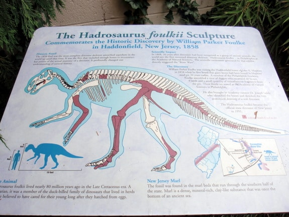Information on Hadrasaurus Haddonfield NJ