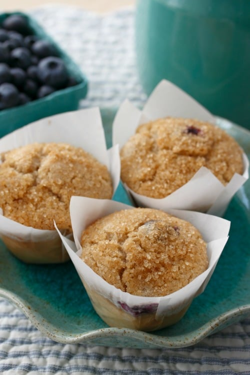 Gluten-Free Blueberry Muffins from Learning to Bake Allergy Free Cookbook