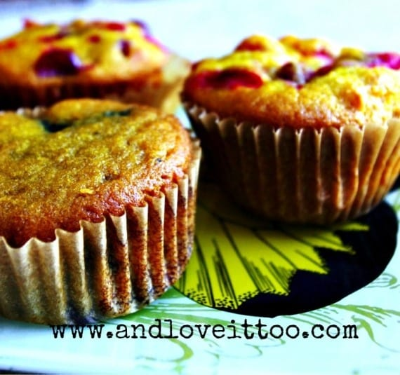 Gluten-Free Paleo Citrus Fruit Muffins from And Love It, Too! for March Muffin Madness. Close up, they're even better!