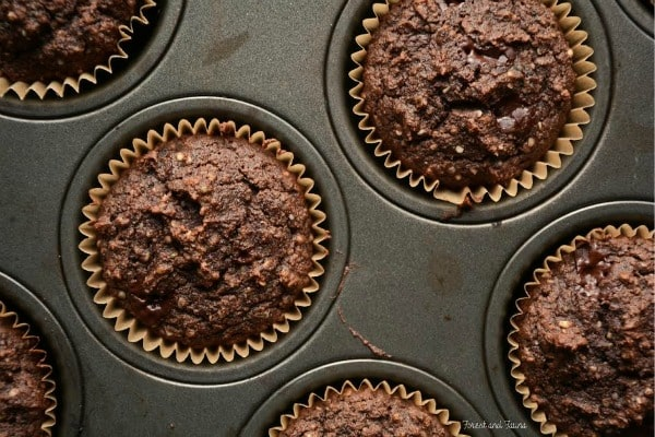 Paleo Chocolate Hemp Protein Muffins (with a Low-Carb Option) from Forest and Fauna--March Muffin Madness!